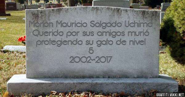 Marlon Mauricio Salgado Uchima Querido por sus amigos murió protegiendo su gato de nivel 5 2002~2017